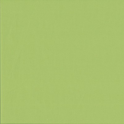 Makower - Spectrum solids - Uni-Webstoff pistachio grün