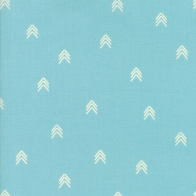 """Compass"" spray - Creekside - Moda Fabrics"