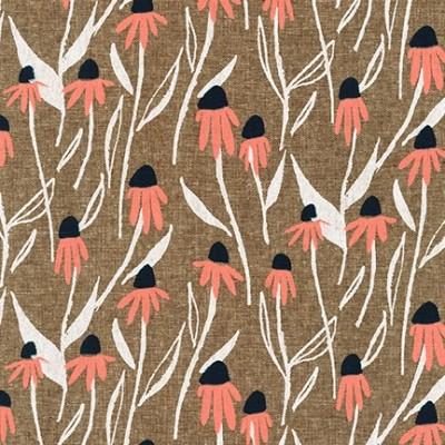 Coneflowers, nutmeg - Quarry Trail by Anna Graham
