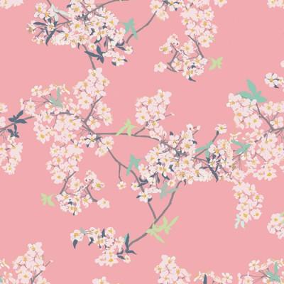Art Gallery - Pandalicious - Yinghua cherrylight