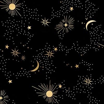 Reststück 74cmx112cm - Florida - Ruby Star Society - Cosmos - black metallic